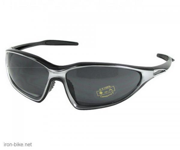 naočare elit-elan crno siva dimljena stakla tw - 3720102